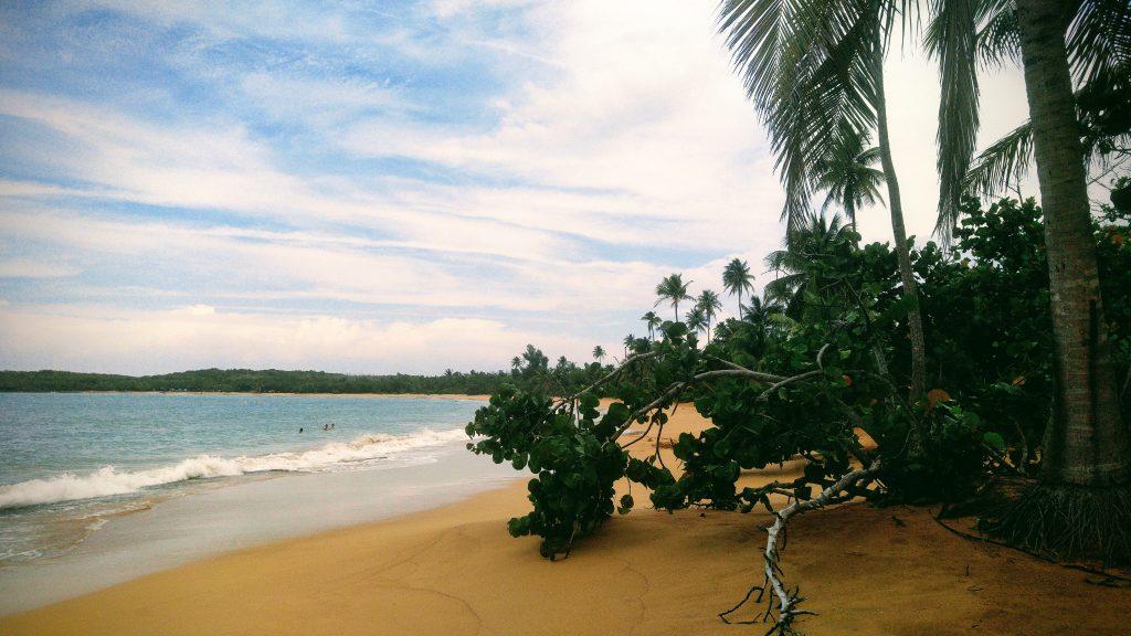 Beach in Loiza